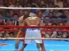 Legendary Nights Julio Cesar Chavez vs. Meldrick Taylor