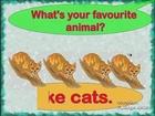English lesson, farm animal vocabulary